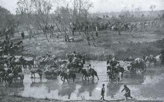 Мукденское сражение 1905 года