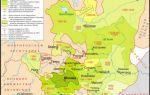 Усиление Московского княжества